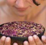 Masaż ziołowymi stemplami z świeżych aromatycznych ziół. Tradycyjne mieszanki leczniczych ziół